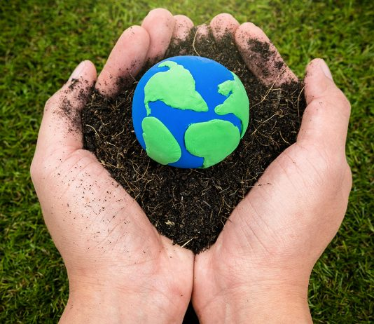 Soil and earth simulation in hand on grass background